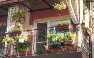 Как оформить балкон цветами внутри